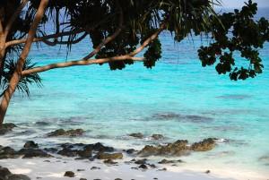 beach-653369_640